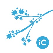 iC Brushes - Brushes Exporter for iColorama