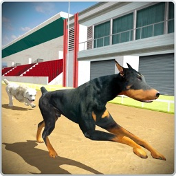 Dog Training Jump and Stunts Simulator 3D