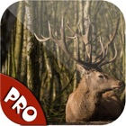 Easy Deer Hunting Calls Pro: Finest Hunting Calls icon