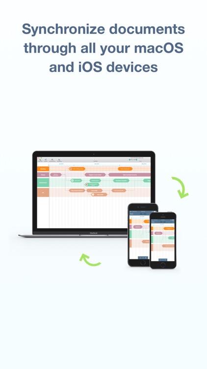 Roadmap Planner - Strategic & Product Management