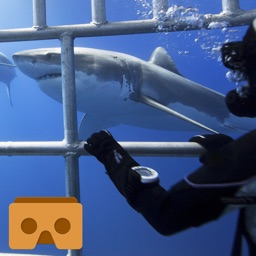 VR Reality Shark Cage for Google Cardboard