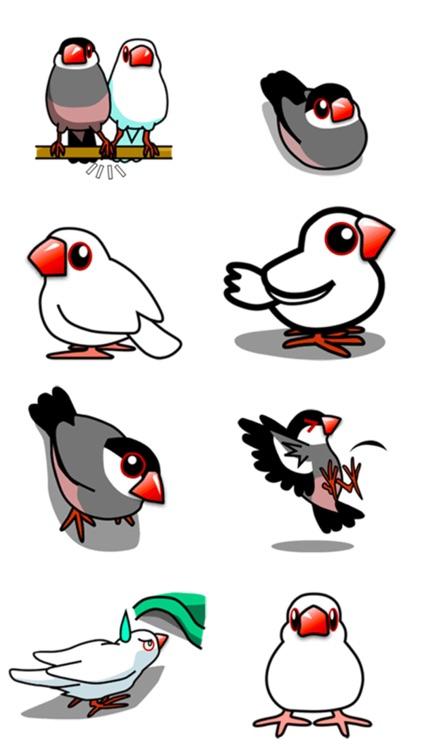Bird Love! screenshot-3