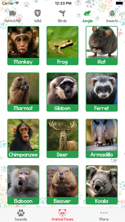 Animal Sounds and Pictures for Baby