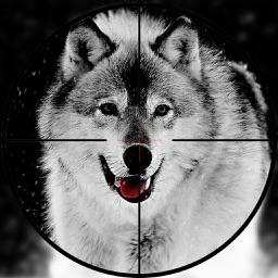 Real Wolf Hunter 2017