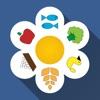 6枚の花弁ダイエットは 6日間に重量を失います!体重日記、減量のためのレシピです。