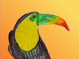Birds of Paradise Sticker Pack
