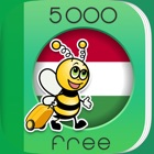 5000 Phrases - Learn Hungarian Language for Free icon