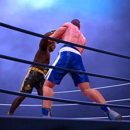 Knockout Punch Boxing - 3D Fighting Game