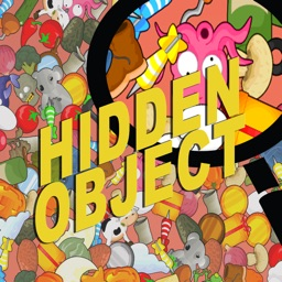 Hidden Object - Can You Find it?