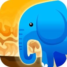 Activities of Pop Elephant