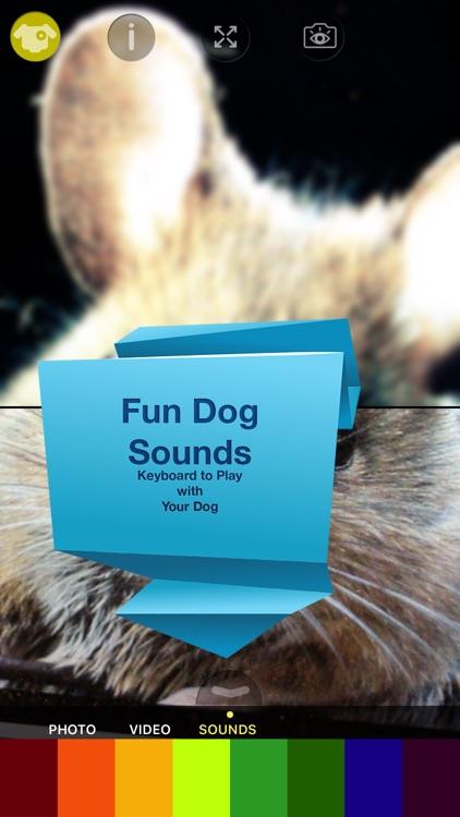 Dog Vision HD screenshot-3