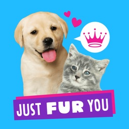 Just Fur You - Animated Hallmark Stickers