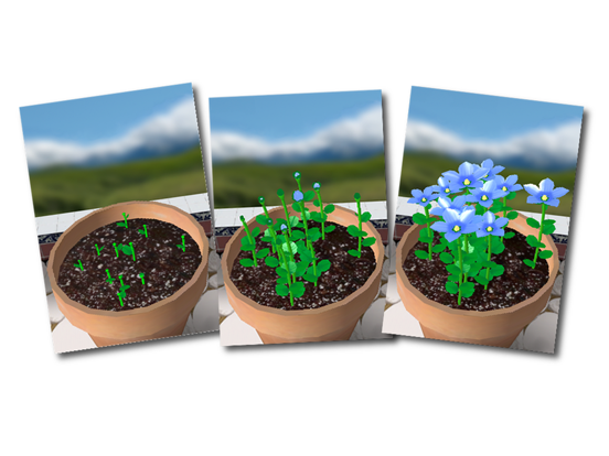 Flower Garden - Grow Flowers and Send Bouquets screenshot