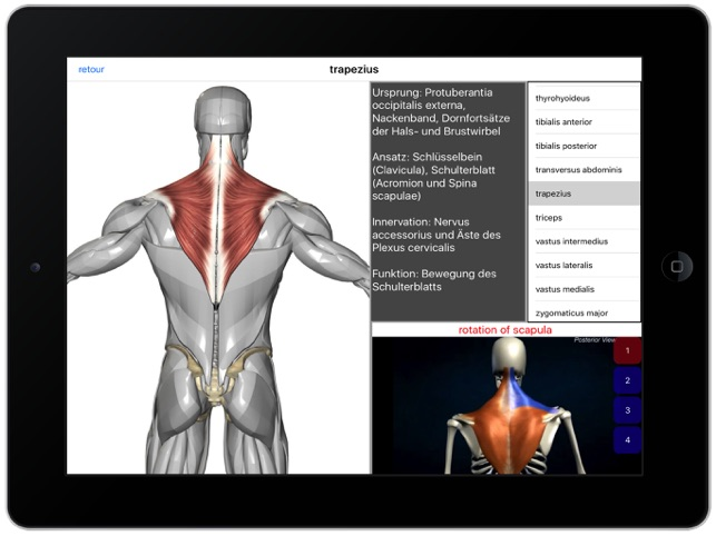 Visual Anatomy im App Store
