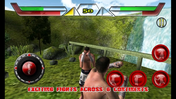 Boxing Fighter Evolution 2015