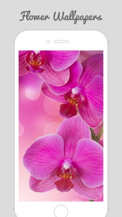HD Flower Wallz - Flowers for Home & Lock Screens