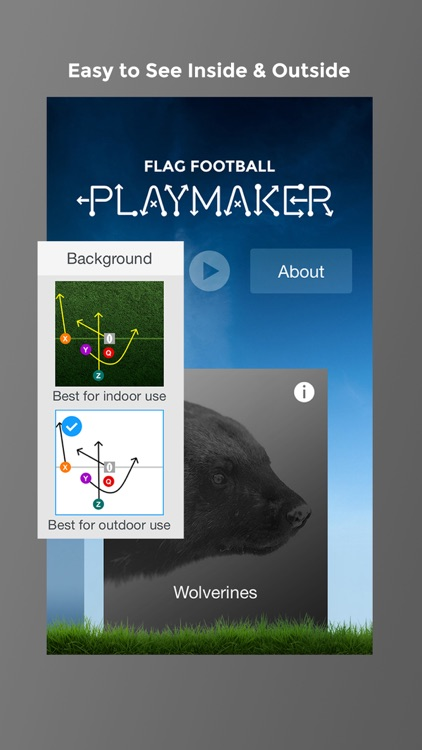 Flag Football Playmaker HD screenshot-4