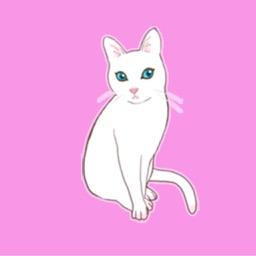 Cute Pussycat!