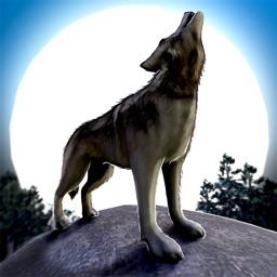 Wolf.io