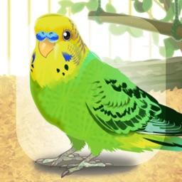 Virtual Therapeutic Parakeet Pet