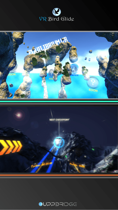 VR bird glideのおすすめ画像3