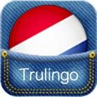 Dutch Translator icon