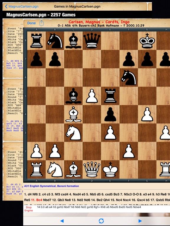 Chessplace для iPad