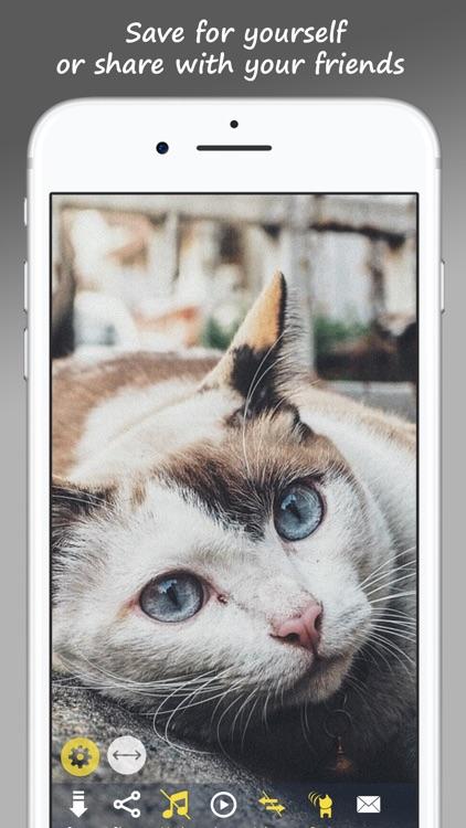 MeowPix: Relaxing Cat Slideshow with Music screenshot-3