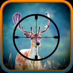 Deer sniper adventures