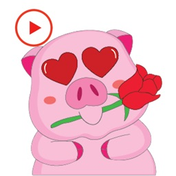Pig Animated Love