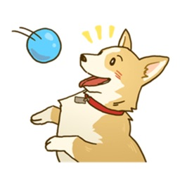 Cute Corgi Dogs Stickers Packs