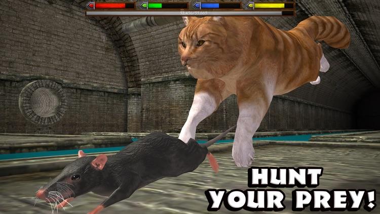 Ultimate Cat Simulator
