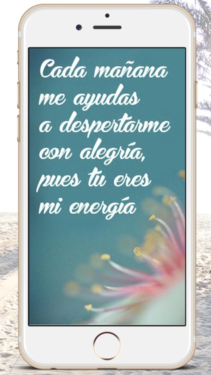 Good Morning  messages in Spanish -  Premium screenshot-3