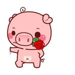 Pig Animated Lovely