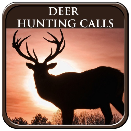 Deer Hunting Call
