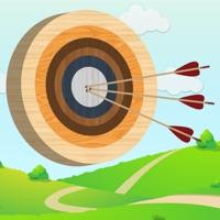 Codes for Archery Challenge 2D Hack
