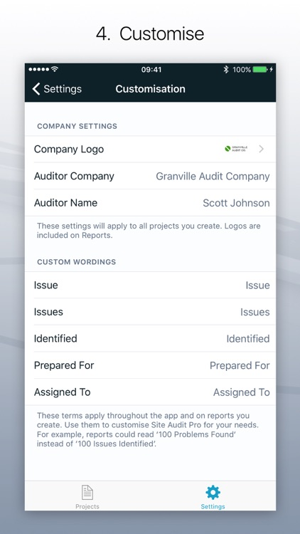 Site Audit Pro screenshot-3