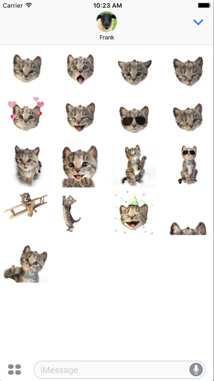 Little Kitten Stickers