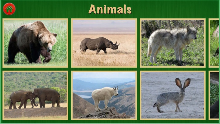 Animal Sounds Pro For Kids and Toddlers Education screenshot-4