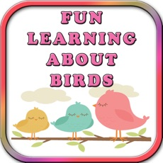 Activities of Fun Learning Birds Stencil for Kids