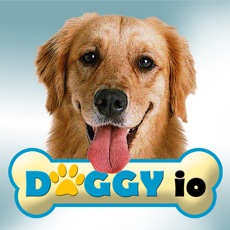 Activities of Doggy io (opoly)