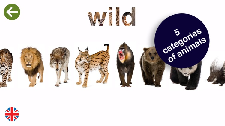 PARADE my picture dictionary of animals