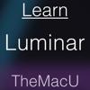 Learn - Luminar Edition