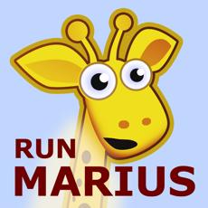 Activities of Run Marius Run