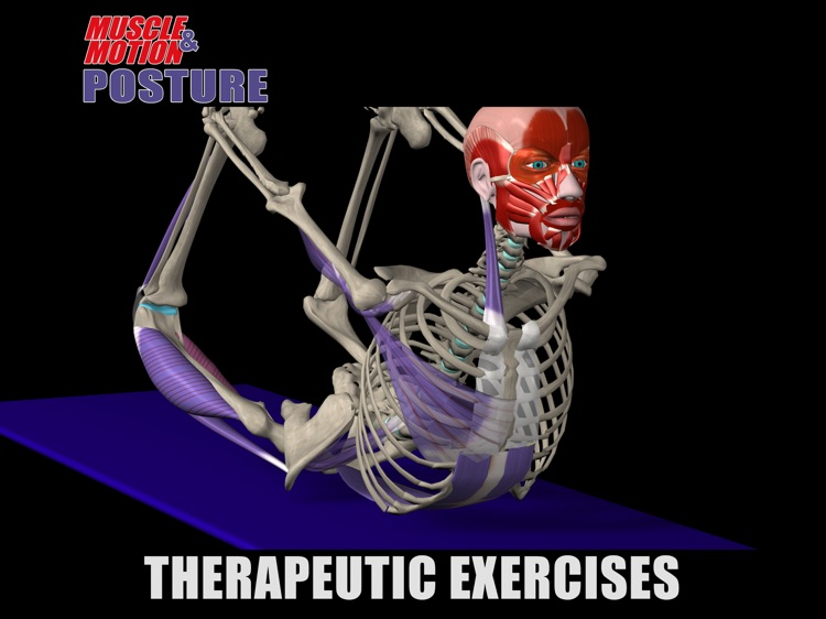 Muscle and Motion Posture screenshot-3