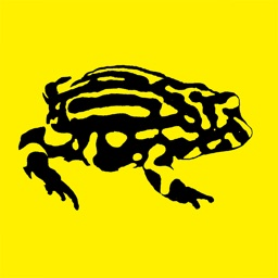 Frogs of Australia