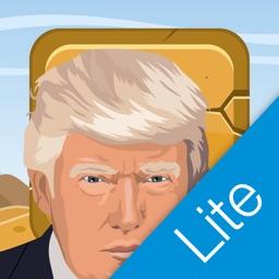 Trump's Wall Lite