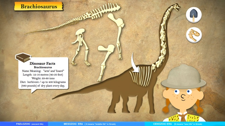 Dinosaur Fossils - History for kids screenshot-4