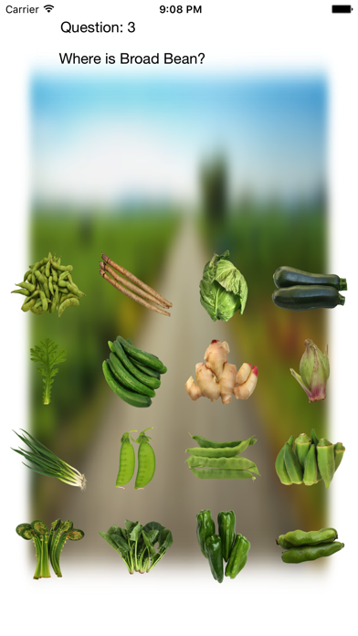 Vegetables Touch ~ simple trivia game ~ screenshot 5
