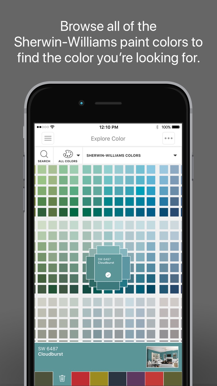 ColorSnap® Visualizer iPhone Screenshot